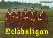 DELSBOLIGAN