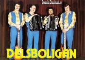 DELSBOLIGAN (1978)